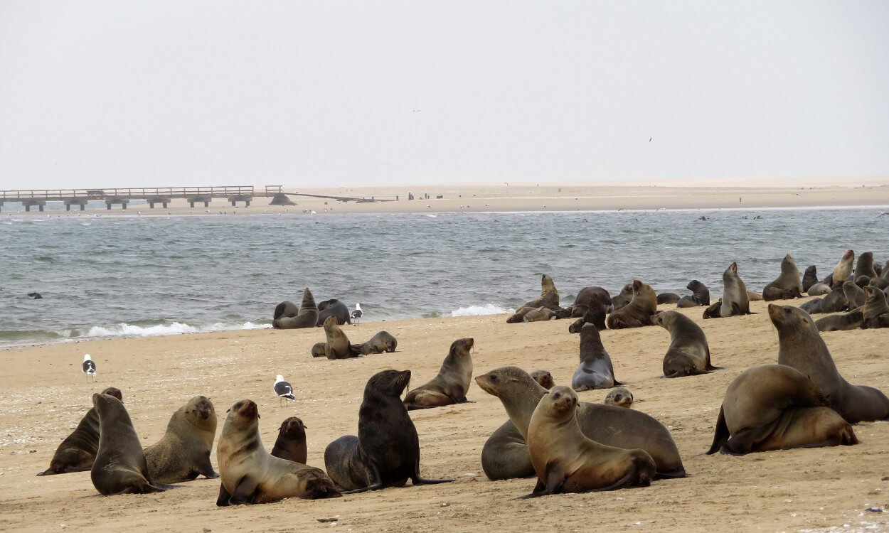 Swakopmund - Namibia